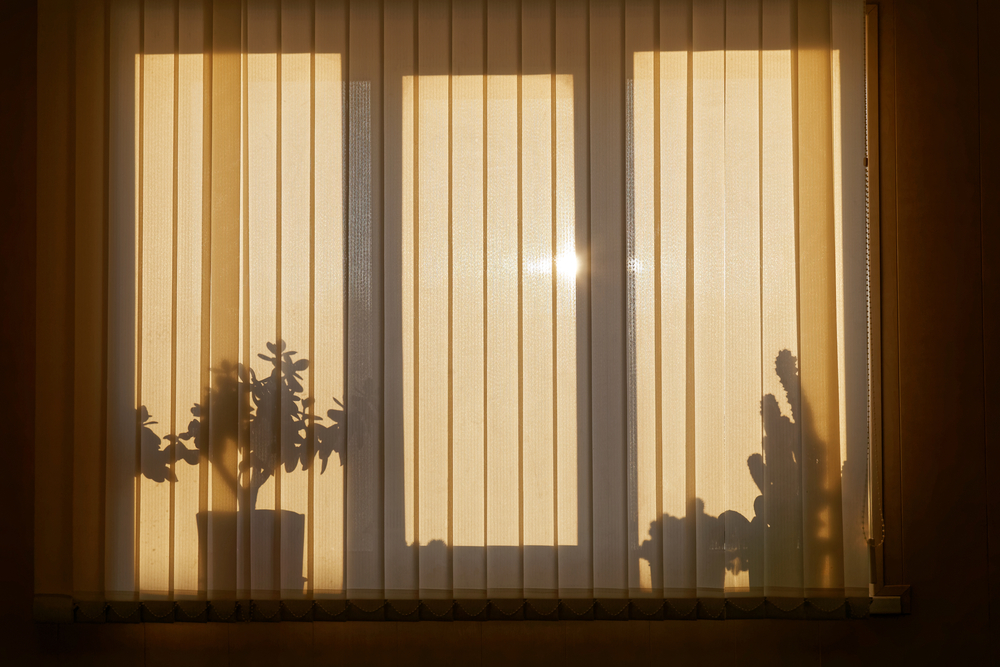 roller blinds for bow windows