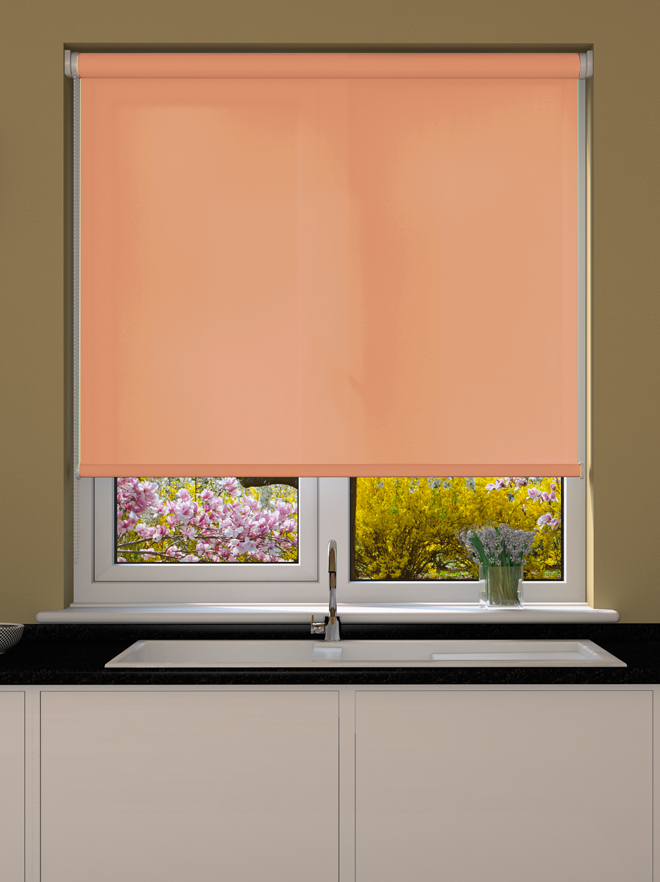 Cantaloupe Roller Blind Made To Measure From 8 99 Hunting for your color palettes. cantaloupe roller blind